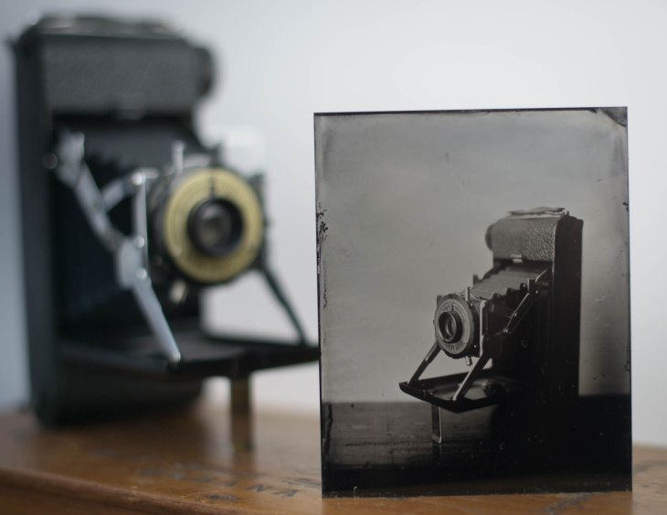 King Penguin camera Tintype